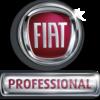 Vetragswerkstatt Fiat Professional
